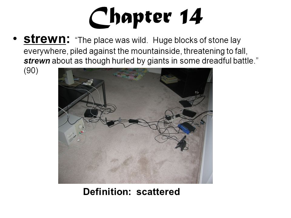 Chapter 14 strewn: The place was wild.