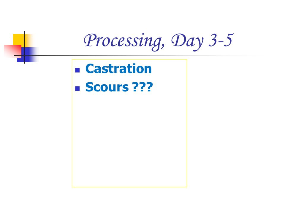 Processing, Day 3-5 Castration Scours ???