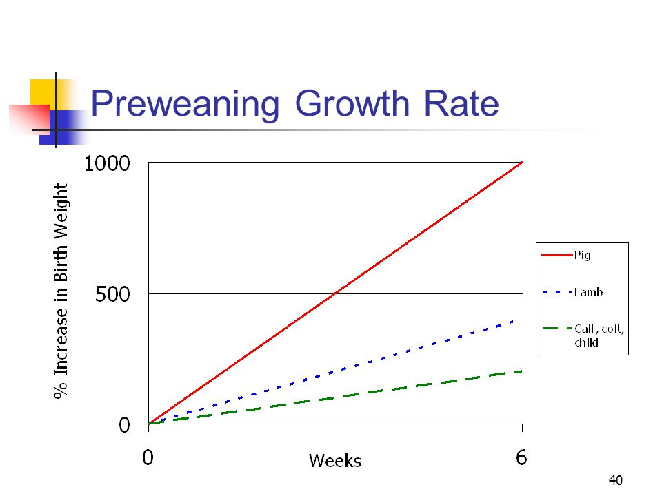 40 Preweaning Growth Rate