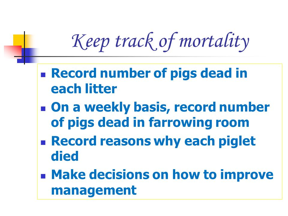 Keep track of mortality Record number of pigs dead in each litter On a weekly basis, record number of pigs dead in farrowing room Record reasons why e