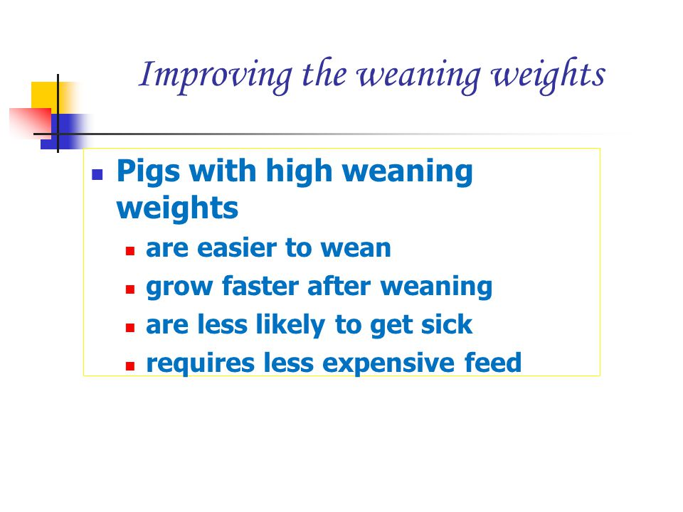 Improving the weaning weights Pigs with high weaning weights are easier to wean grow faster after weaning are less likely to get sick requires less ex