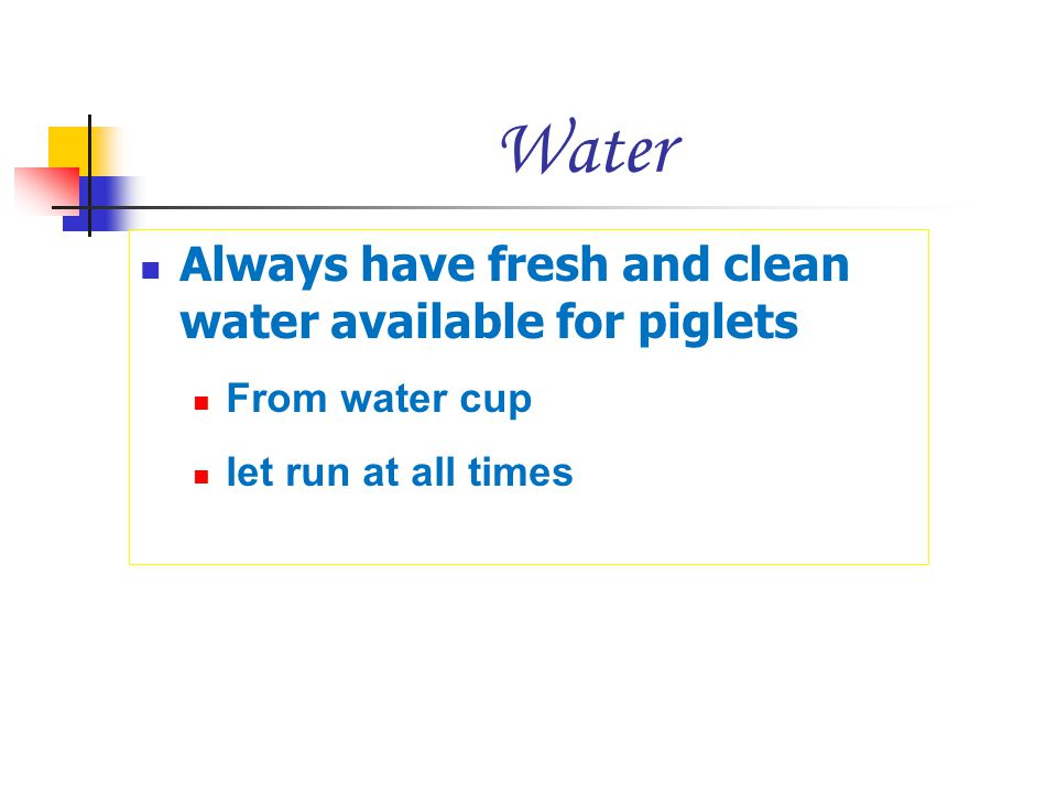 Water Always have fresh and clean water available for piglets From water cup let run at all times