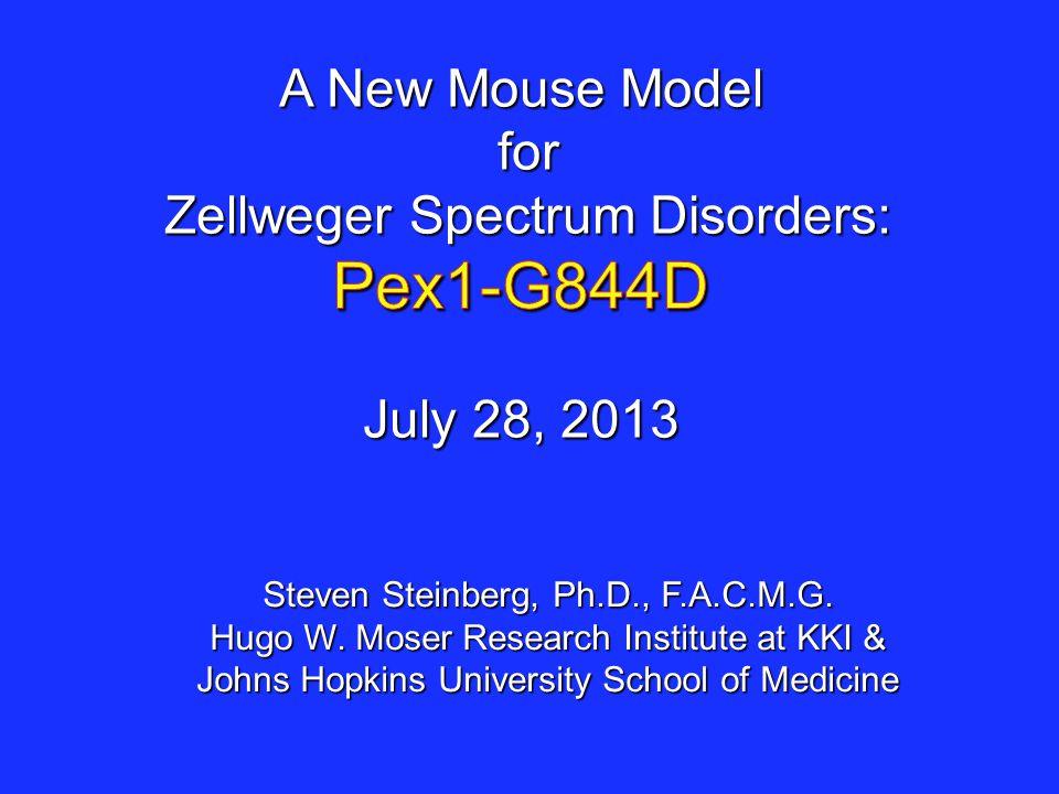 Steven Steinberg, Ph.D., F.A.C.M.G. Hugo W.