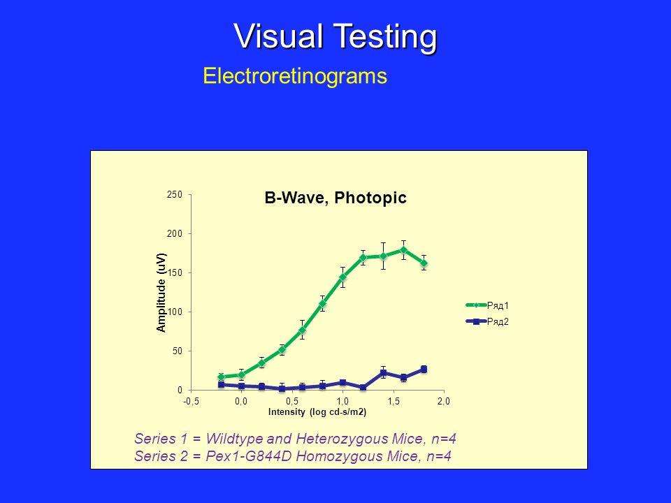 Visual Testing Electroretinograms Series 1 = Wildtype and Heterozygous Mice, n=4 Series 2 = Pex1-G844D Homozygous Mice, n=4