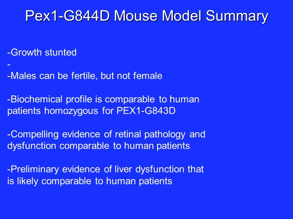 Pex1-G844D Mouse Model Summary -Growth stunted - -Males can be fertile, but not female -Biochemical profile is comparable to human patients homozygous