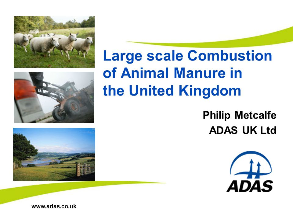 www.adas.co.uk Large scale Combustion of Animal Manure in the United Kingdom Philip Metcalfe ADAS UK Ltd