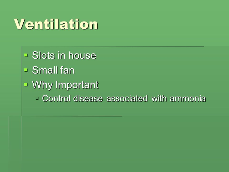 Ventilation  Slots in house  Small fan  Why Important  Control disease associated with ammonia