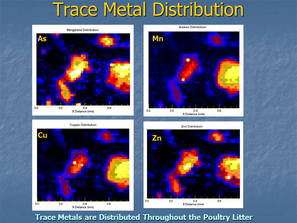 Trace Metal Distribution Trace Metals are Distributed Throughout the Poultry Litter As Cu Mn Zn