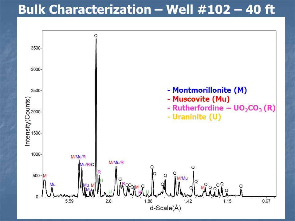 Minerals Identified - Quartz (Q) - Montmorillonite (M) - Muscovite (Mu) - Rutherfordine – UO 2 CO 3 (R) - Uraninite (U) Bulk Characterization – Well #102 – 40 ft