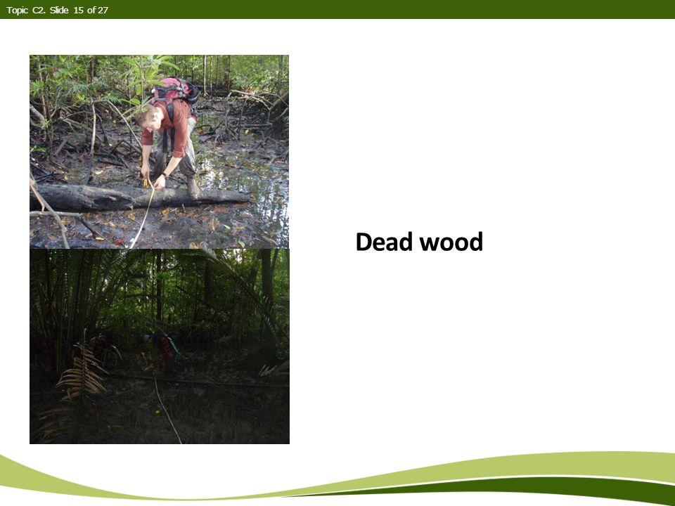 Dead wood Topic C2. Slide 15 of 27