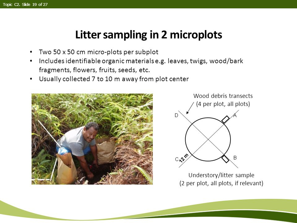 Litter sampling in 2 microplots Topic C2.