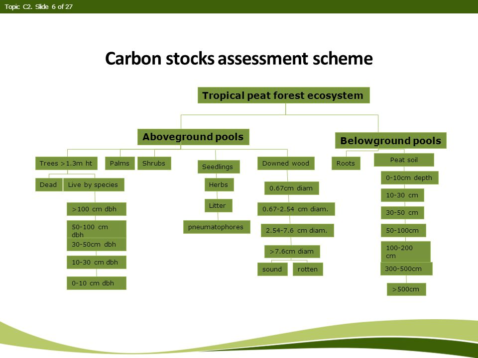 Carbon stocks assessment scheme Topic C2.