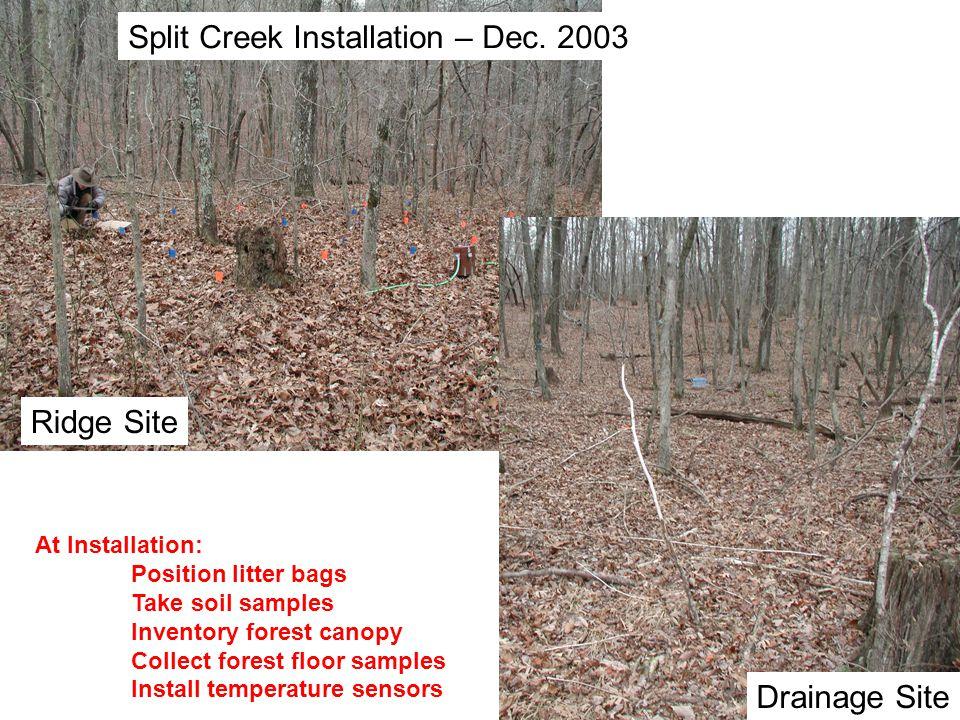 Split Creek Installation – Dec. 2003 Ridge Site Drainage Site At Installation: Position litter bags Take soil samples Inventory forest canopy Collect