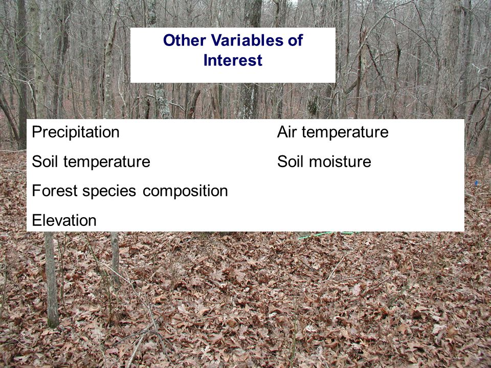 PrecipitationAir temperature Soil temperatureSoil moisture Forest species composition Elevation Other Variables of Interest