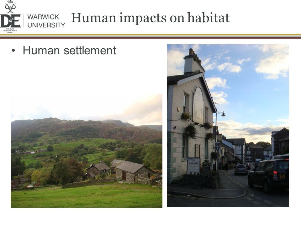 Human impacts on habitat Human settlement
