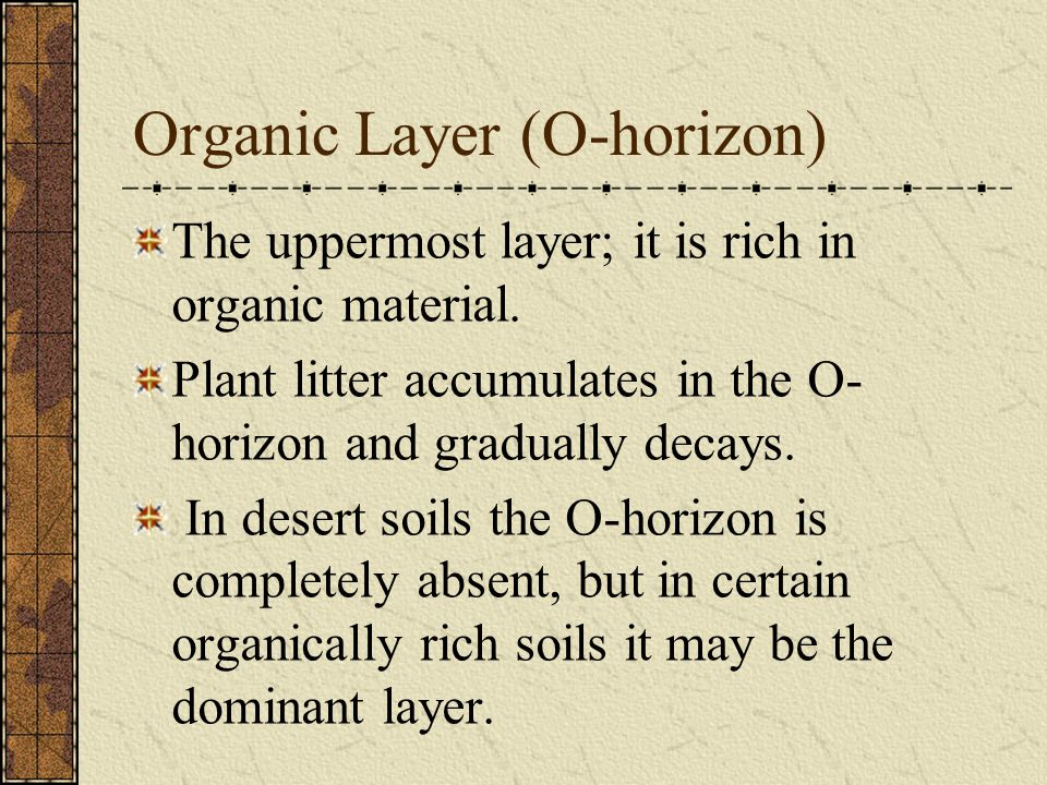 Organic Layer (O-horizon) The uppermost layer; it is rich in organic material. Plant litter accumulates in the O- horizon and gradually decays. In des