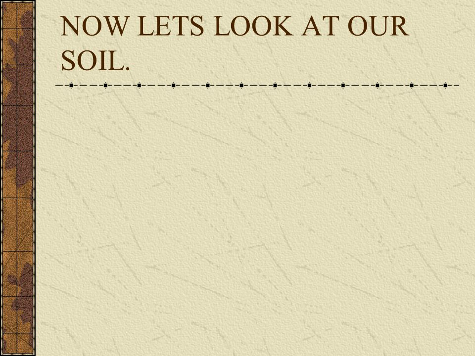 NOW LETS LOOK AT OUR SOIL.