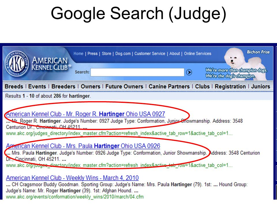 13 Google Search (Judge)