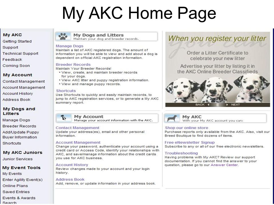 35 My AKC Home Page
