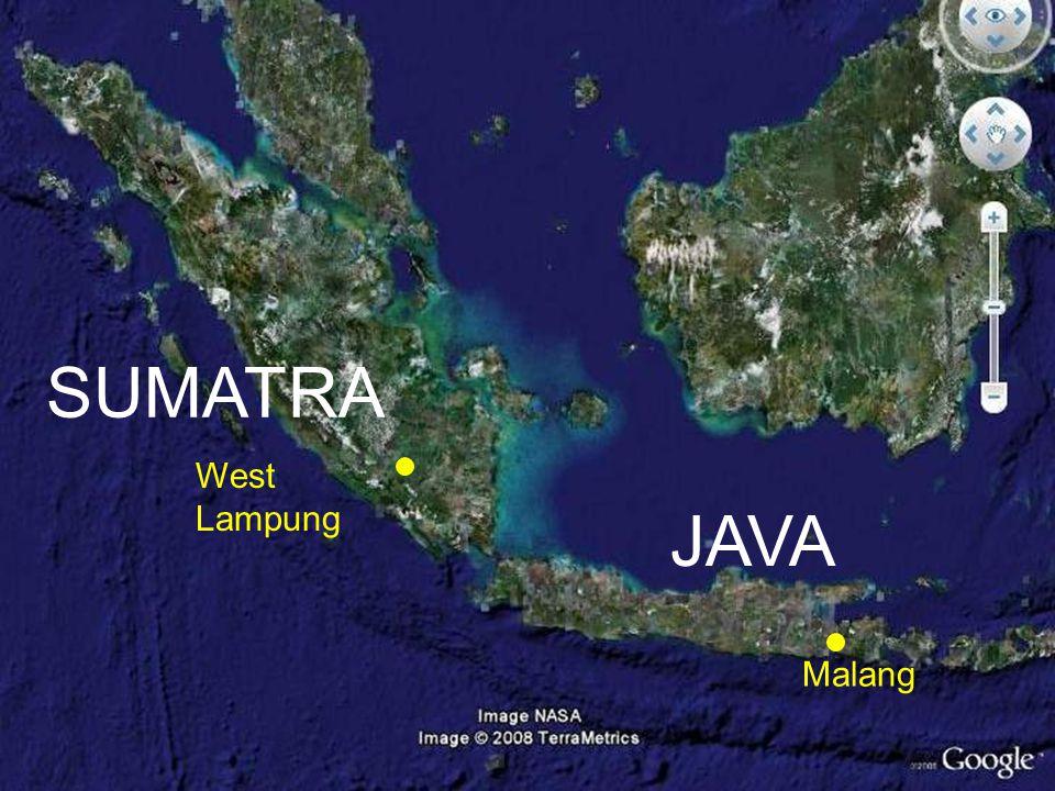 West Lampung Malang SUMATRA JAVA