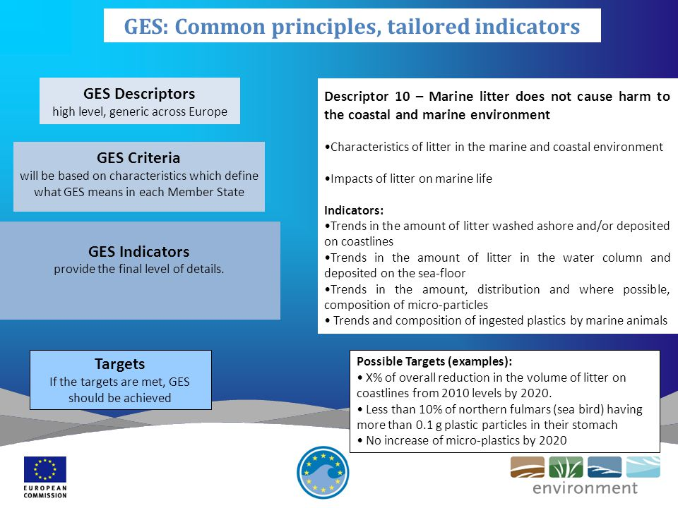 GES Descriptors high level, generic across Europe GES Criteria will be based on characteristics which define what GES means in each Member State GES Indicators provide the final level of details.