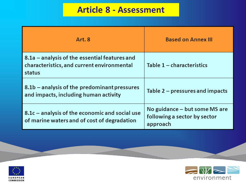 Article 8 - Assessment Art.