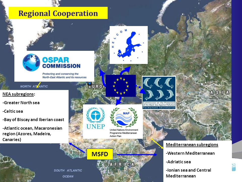 NEA subregions: -Greater North sea -Celtic sea -Bay of Biscay and Iberian coast -Atlantic ocean, Macaronesian region (Azores, Madeira, Canaries) Mediterranean subregions -Western Mediterranean -Adriatic sea -Ionian sea and Central Mediterranean -Aegean-Levantine sea MSFD Regional Cooperation