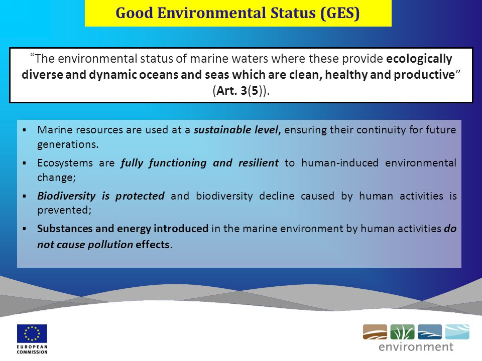 Good Environmental Status (GES) The environmental status of marine waters where these provide ecologically diverse and dynamic oceans and seas which are clean, healthy and productive (Art.