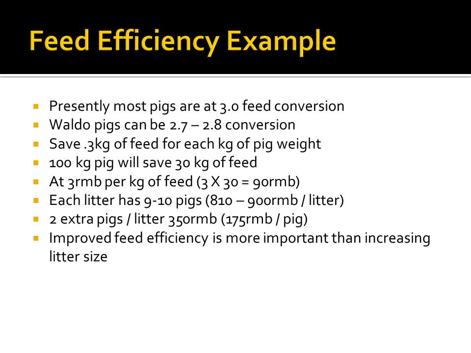  Presently most pigs are at 3.0 feed conversion  Waldo pigs can be 2.7 – 2.8 conversion  Save.3kg of feed for each kg of pig weight  100 kg pig wi