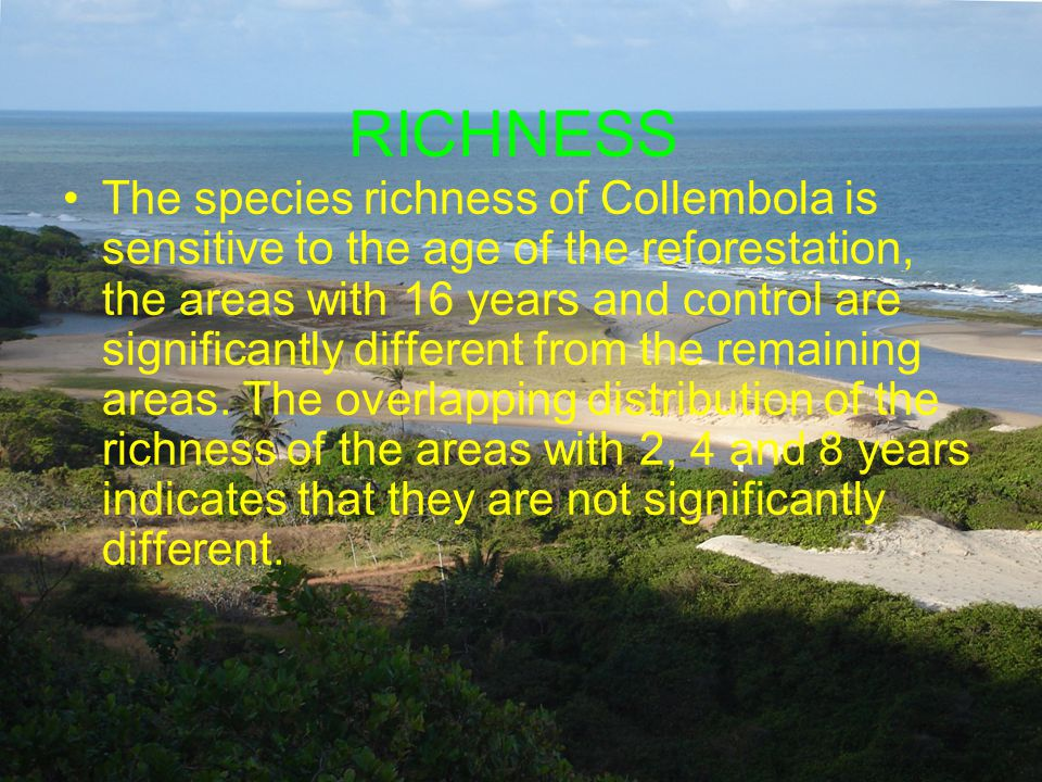 RICHNESS The species richness of Collembola is sensitive to the age of the reforestation, the areas with 16 years and control are significantly different from the remaining areas.