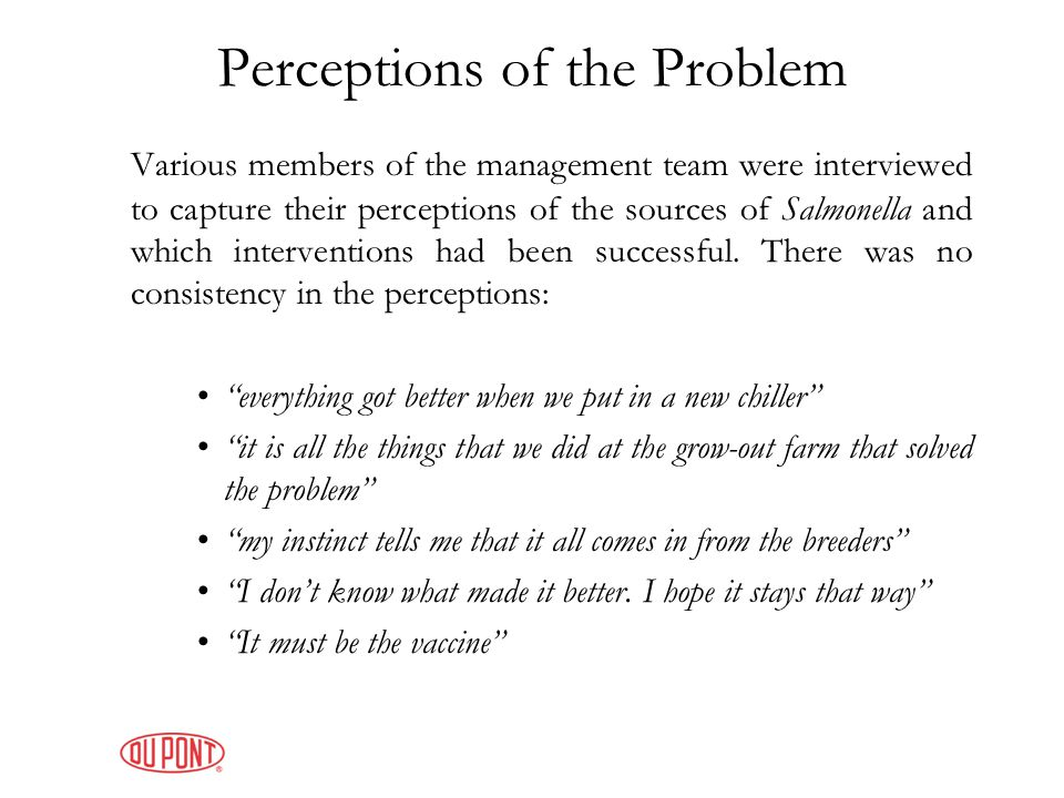 Perceptions of the Problem Various members of the management team were interviewed to capture their perceptions of the sources of Salmonella and which interventions had been successful.