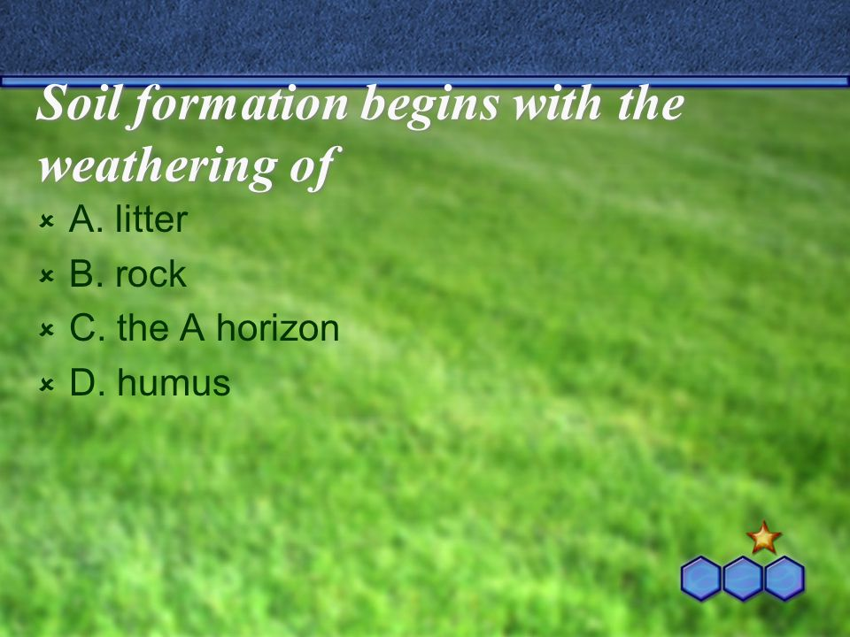 Soil formation begins with the weathering of  A. litter  B. rock  C. the A horizon  D. humus