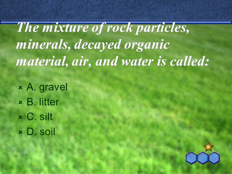 The mixture of rock particles, minerals, decayed organic material, air, and water is called:  A. gravel  B. litter  C. silt  D. soil