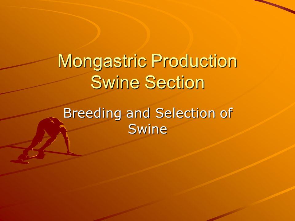 Eight major breeds of swine in the U.S.