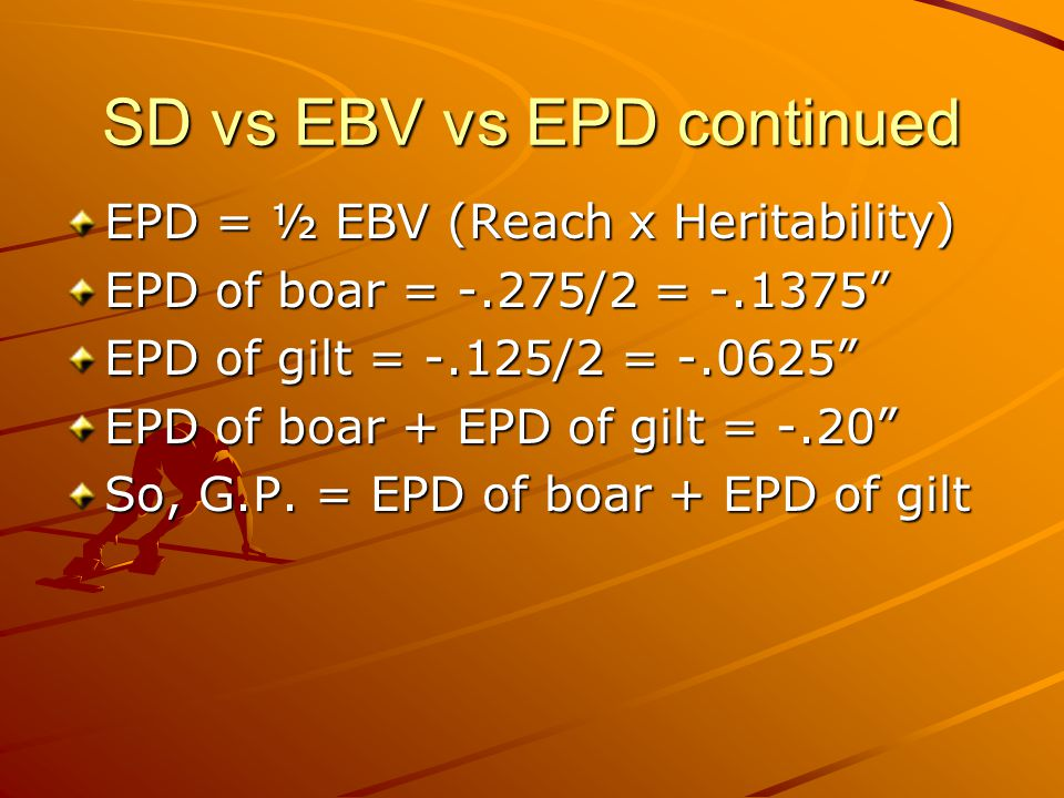 SD vs EBV vs EPD continued EPD = ½ EBV (Reach x Heritability) EPD of boar = -.275/2 = -.1375 EPD of gilt = -.125/2 = -.0625 EPD of boar + EPD of gilt = -.20 So, G.P.