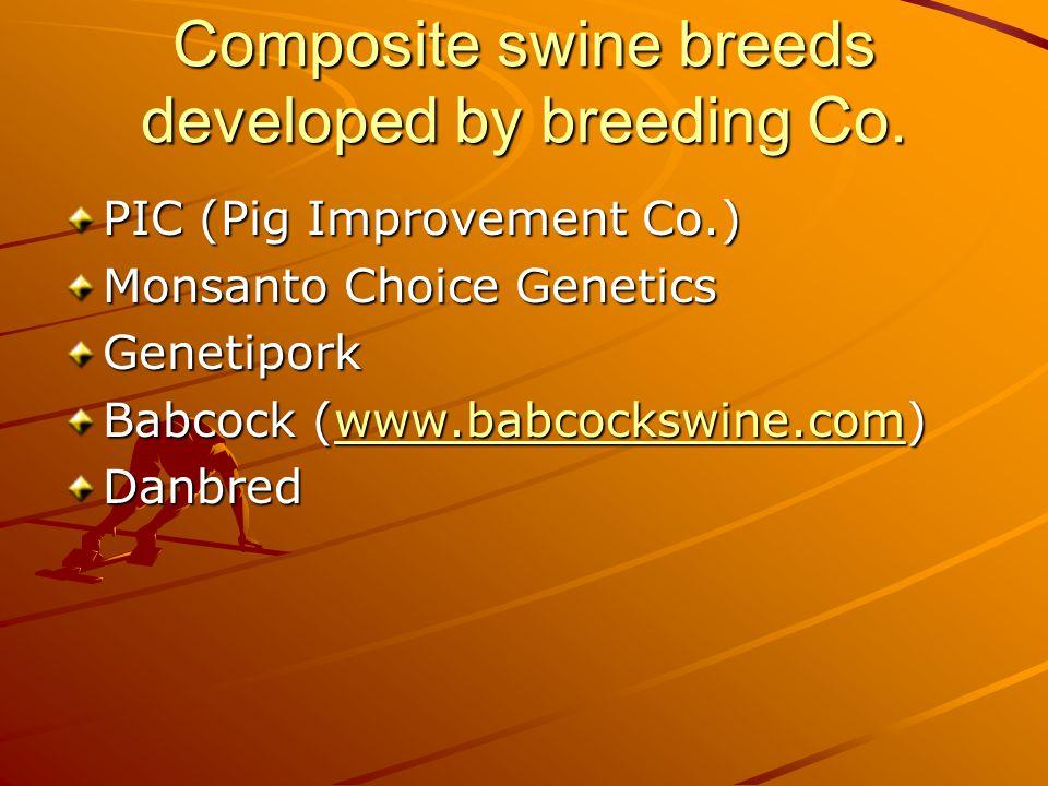 What general factors determine swine performance.