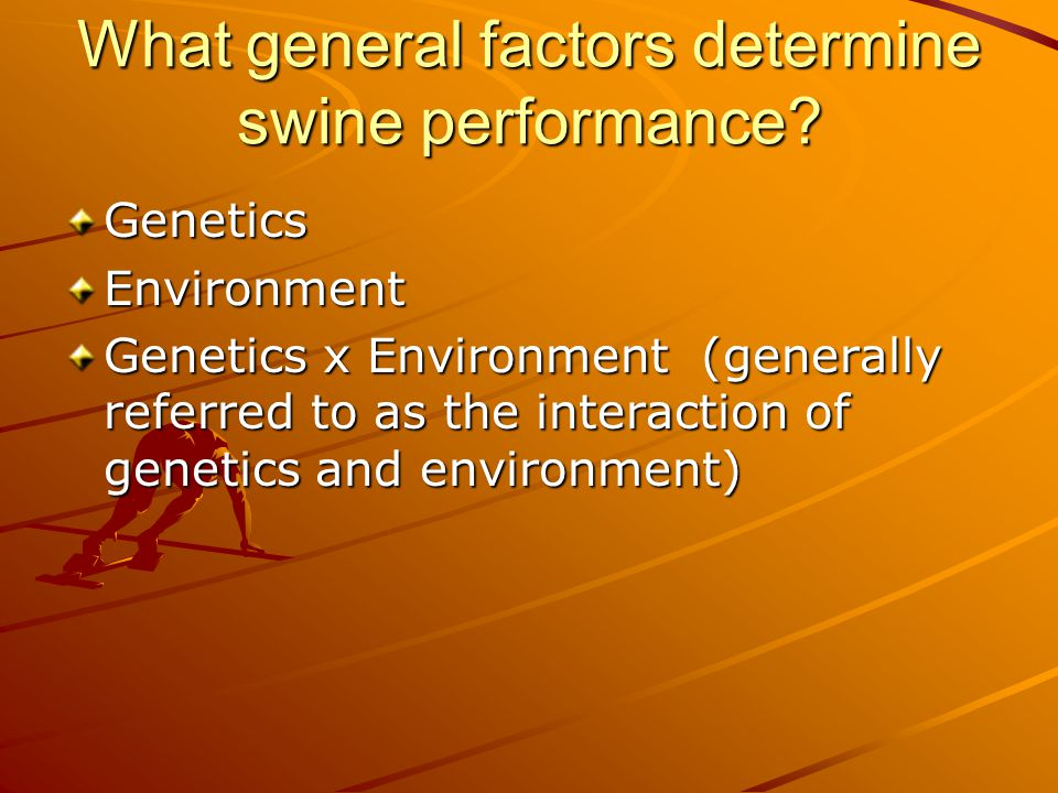 Comparison of terms GP = S.D.