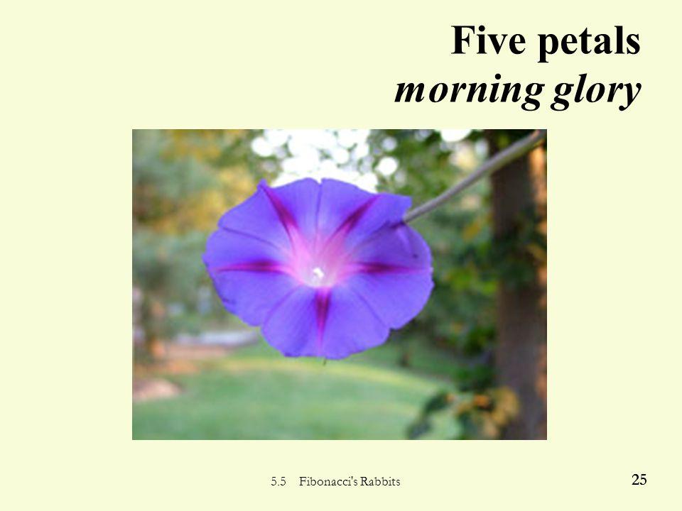 5.5 Fibonacci s Rabbits 24 Three petals… trillium