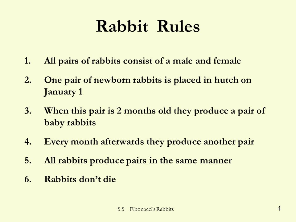 4 Rabbit Rules 1.All pairs of rabbits consist of a male and female 2.One pair of newborn rabbits is placed in hutch on January 1 3.When this pair is 2 months old they produce a pair of baby rabbits 4.Every month afterwards they produce another pair 5.All rabbits produce pairs in the same manner 6.Rabbits don't die
