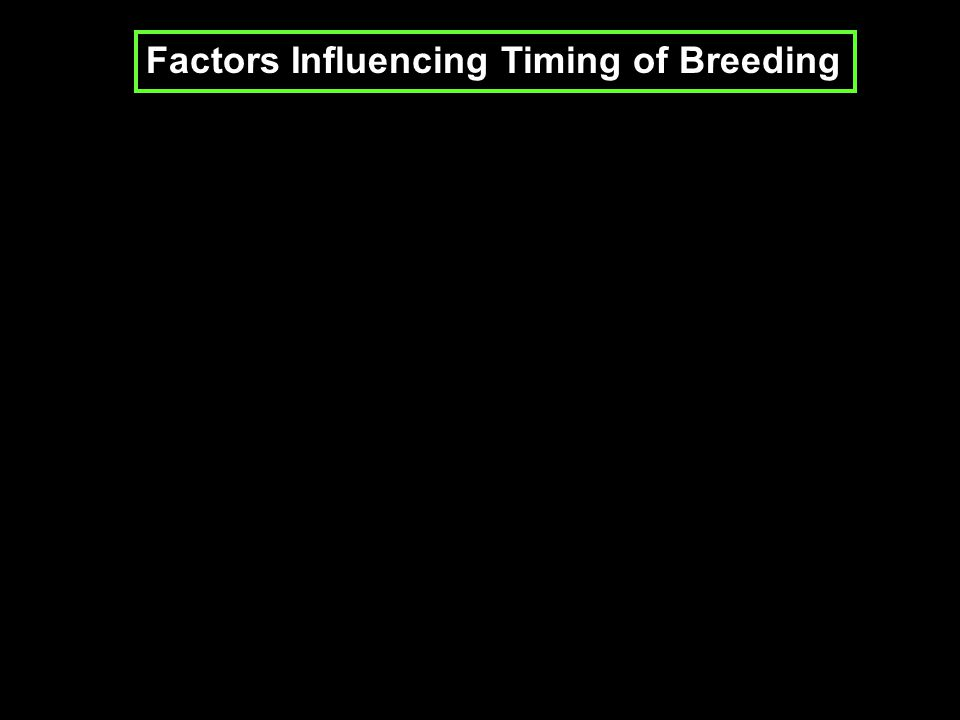 Factors Influencing Timing of Breeding
