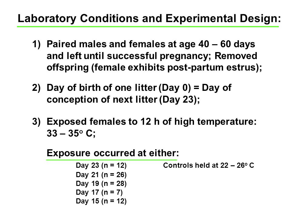 Laboratory Conditions and Experimental Design: 1)Paired males and females at age 40 – 60 days and left until successful pregnancy; Removed offspring (female exhibits post-partum estrus); 2)Day of birth of one litter (Day 0) = Day of conception of next litter (Day 23); 3)Exposed females to 12 h of high temperature: 33 – 35 o C; Exposure occurred at either: Day 23 (n = 12)Controls held at 22 – 26 o C Day 21 (n = 26) Day 19 (n = 28) Day 17 (n = 7) Day 15 (n = 12)