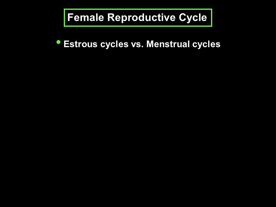 Bruce effect: Pregnancy blockage Whitten effect: Estrous synchronization Lee-Boot effect: Induced estrus