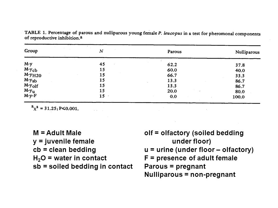 M = Adult Maleolf = olfactory (soiled bedding y = juvenile femaleunder floor) cb = clean beddingu = urine (under floor – olfactory) H 2 O = water in c