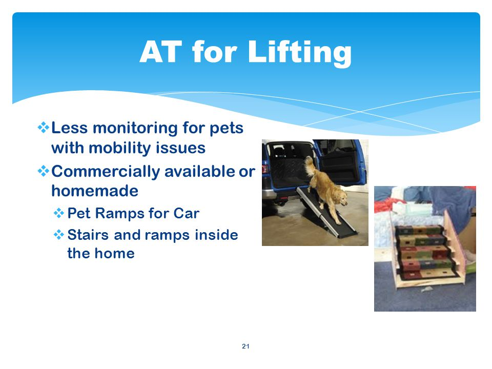  Less monitoring for pets with mobility issues  Commercially available or homemade  Pet Ramps for Car  Stairs and ramps inside the home 21 AT for Lifting