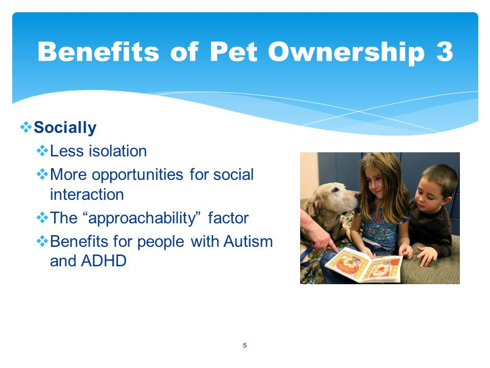 5  Socially  Less isolation  More opportunities for social interaction  The approachability factor  Benefits for people with Autism and ADHD Benefits of Pet Ownership 3