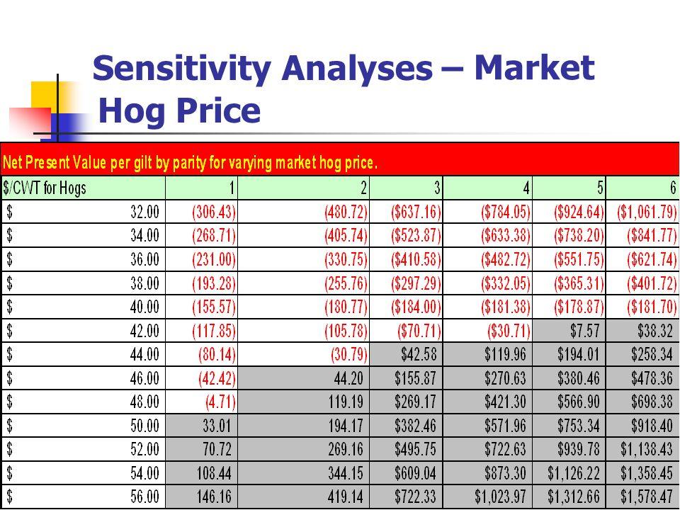 Sensitivity Analyses – Hog Price Market