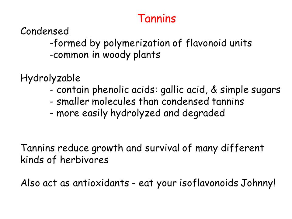 Tannins Condensed -formed by polymerization of flavonoid units -common in woody plants Hydrolyzable - contain phenolic acids: gallic acid, & simple sugars - smaller molecules than condensed tannins - more easily hydrolyzed and degraded Tannins reduce growth and survival of many different kinds of herbivores Also act as antioxidants - eat your isoflavonoids Johnny!
