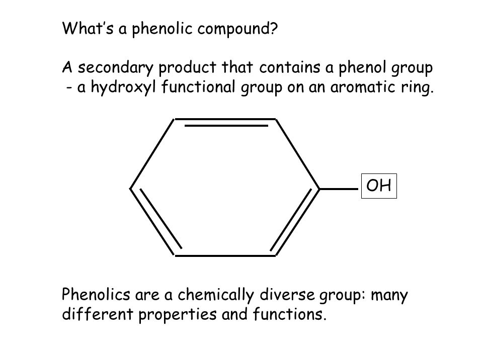 What's a phenolic compound.