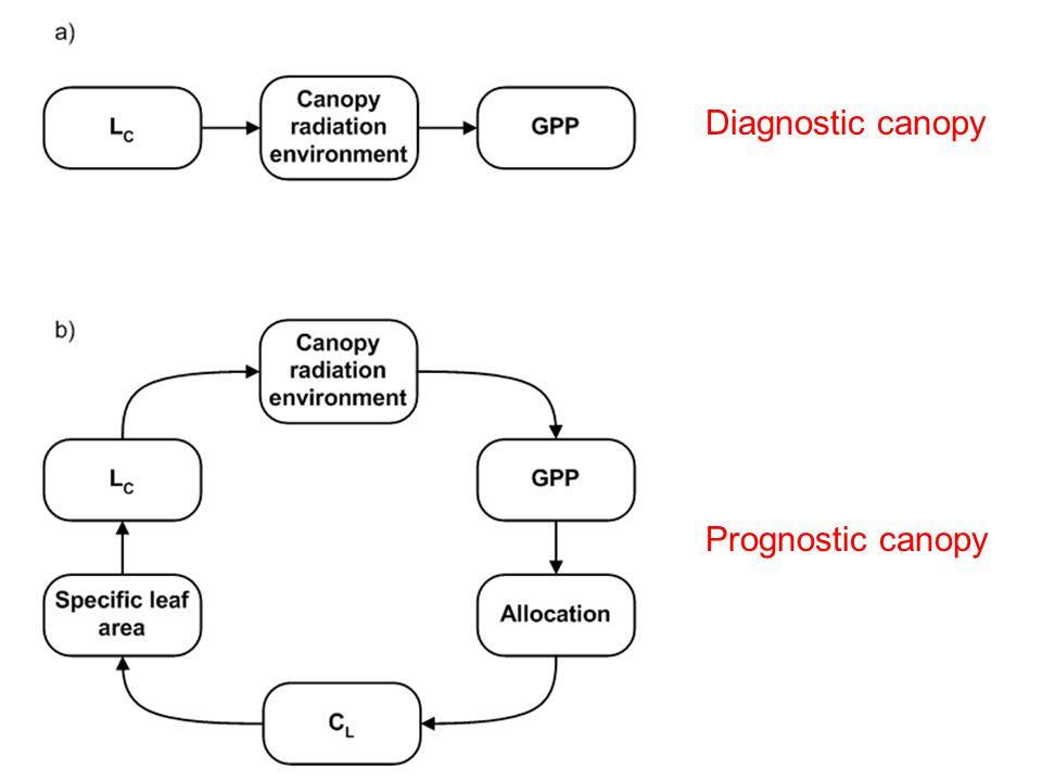 Diagnostic canopy Prognostic canopy