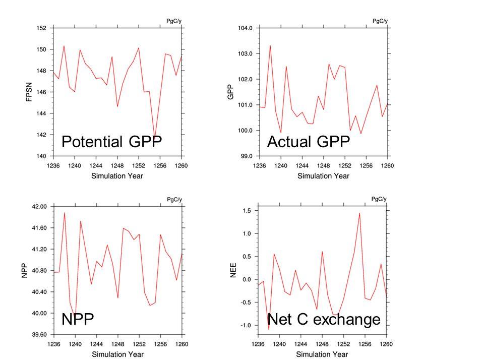 Potential GPPActual GPP NPPNet C exchange